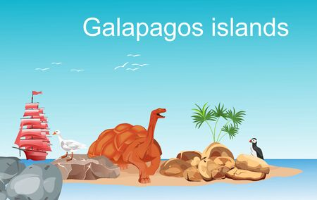 Galapagos islands illustration, turtle, beach, vector