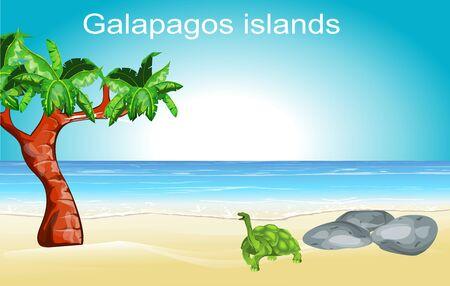 Galapagos islands nature scene, turtle on the ocean's coast, vector