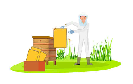Beekeeper in protective hat and dress in the field on countryside background cartoon vector illustration