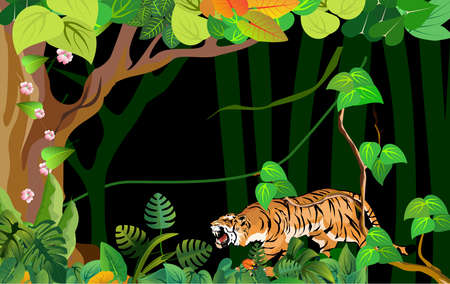 Tiger walking in the night jungle, background, trees, plants.