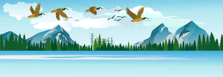 migratory birds fly in the clouds over the beautiful lake, panoramic vector illustration