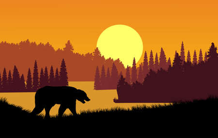 Silhouettes of the lake among the forests, black bear silhouette, vector illustration Illusztráció