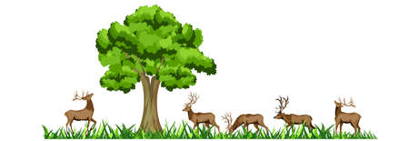 Group of deers under tree, isolted on white, vector illustration Illustration