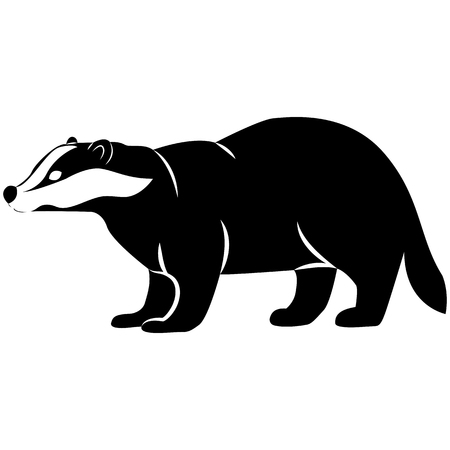 Vector image of badger silhouette on white background