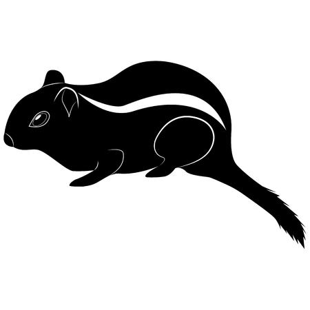 Vector de la imagen de la silueta de la ardilla