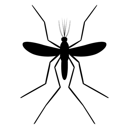 Vector image of a mosquito silhouette on a white background Ilustrace