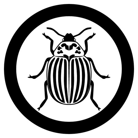 Vector image of the Colorado beetle silhouette on a white background Banque d'images - 122173382