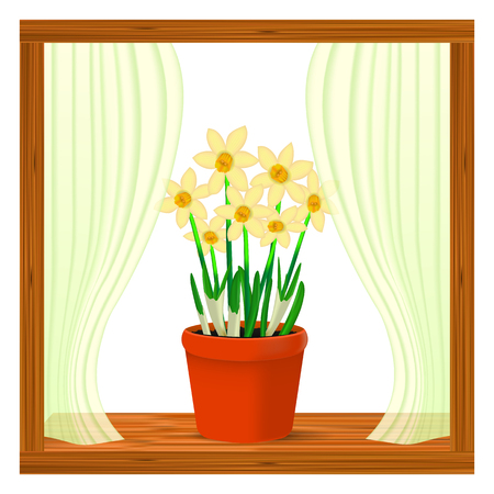 Vector, realistic image of yellow flowers daffodil in a pot in the window on the window sill