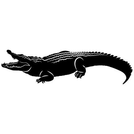 Grafika wektorowa sylwetki krokodyla z otwartymi ustami na białym tle