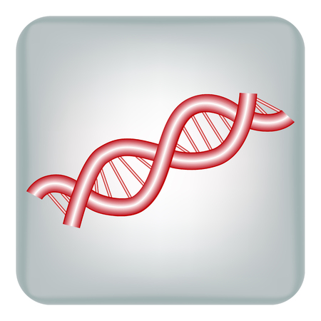 Vector image icons Deoxyribonucleic acid