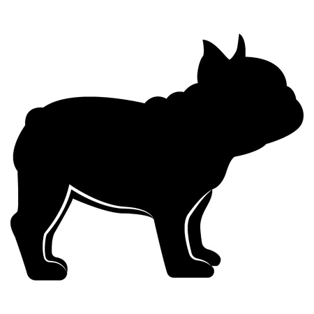 Vector image of a silhouette of a dog breeds a French bulldog on a white background