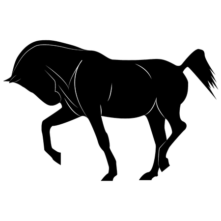 Vector horse silhouette image