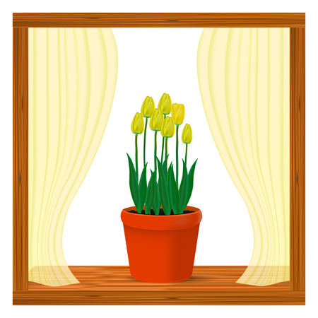 Vector, realistic image of yellow flowers of tulips in a pot in the window on the window sill