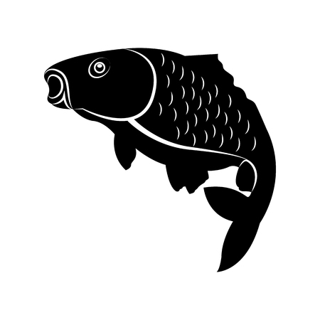 Vector image of fish carp silhouette