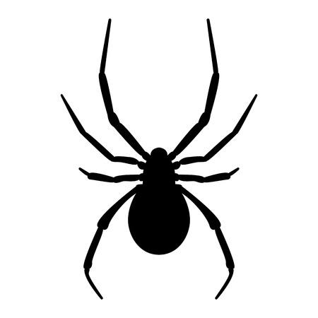 Vector image of spider silhouette Ilustración de vector