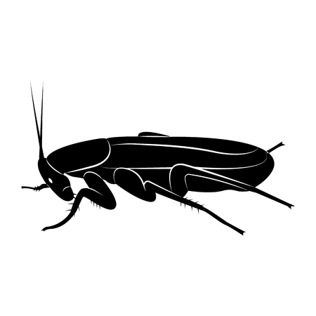 Vector image of silhouette of cockroach 向量圖像