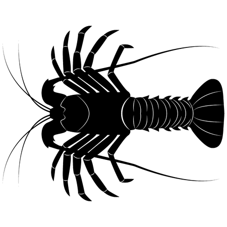 Vector image of the silhouette of the lobster