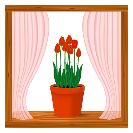 Vector, realistic image of red flowers of tulips in a pot in the window on the window sill