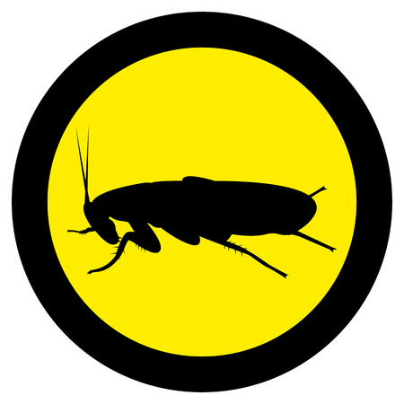 Vector image of silhouette of cockroach 일러스트