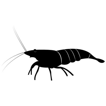 Vector image of shrimp silhouette Illustration