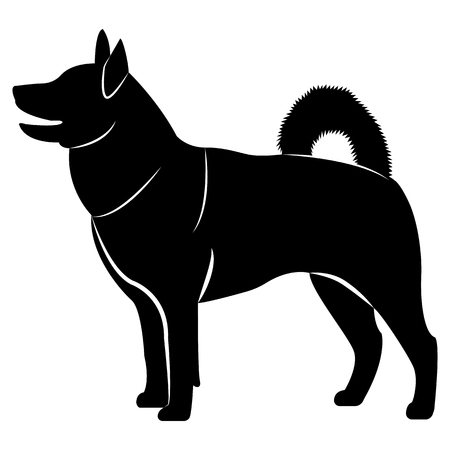 Vector image of a silhouette of the hawker breed dog on a white background 矢量图像