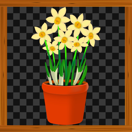 Vector, realistic image of yellow flowers of daffodils in a pot on a transparent background in a wooden frame.