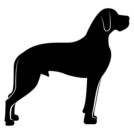 Vector image of a dog silhouette of a breed royal dog on a white background