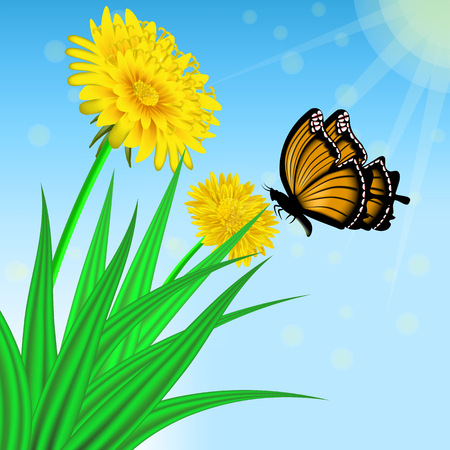 Vector image of realistic flowers of dandelion in grass and a flying butterfly. Greeting card with a summer day