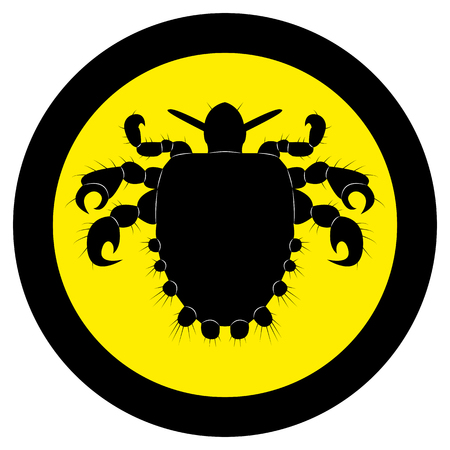 Vector image of silhouette of lice