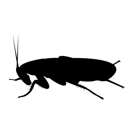 Vektorbild der Silhouette der Kakerlake Vektorgrafik