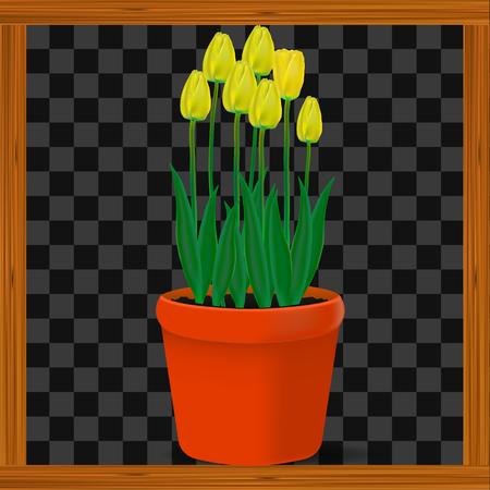 Vector, realistic image of yellow flowers tulips in a pot on a transparent background in a wooden frame