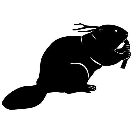 Image vectorielle d'une silhouette d'un castor sur fond blanc