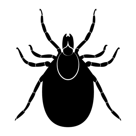 Vector image of a silhouette of a tick on a white background.
