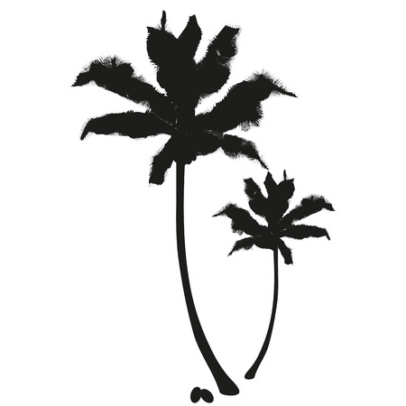 Vector flat image of coconut palms in black. Isolated palm tree with cabbage  イラスト・ベクター素材