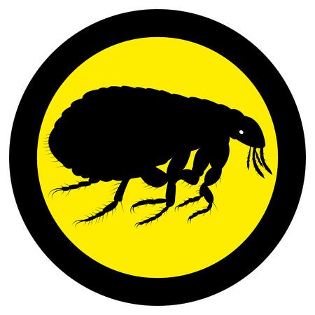 Vector image of flea silhouette