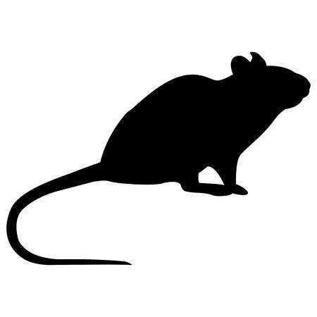 Vektorbild einer Silhouette einer Ratte auf weißem Hintergrund