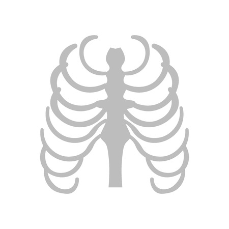 Sternum icon vector isolated on white background for your web and mobile app design, Sternum logo concept