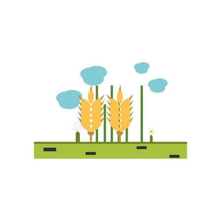 Wheat icon vector isolated on white background for your web and mobile app design, Wheat logo concept