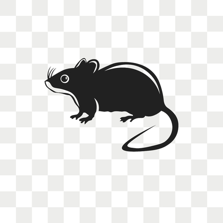 Rat vector icon isolated on transparent background, Rat logo concept