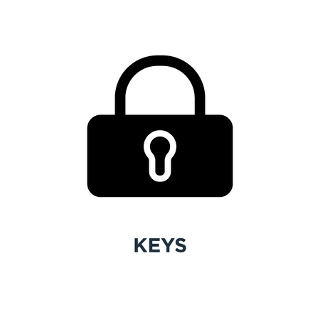keys icon. key . protection and security sign concept symbol design, lock vector illustration