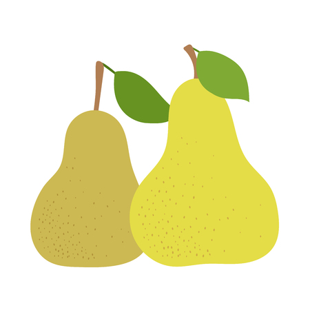 Pear fruits. Hand drawn doodle vector sketch. Sweet food. Duchess