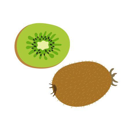 Kiwi fruits. Hand drawn doodle vector sketch. Exotic sweet food. Green slice