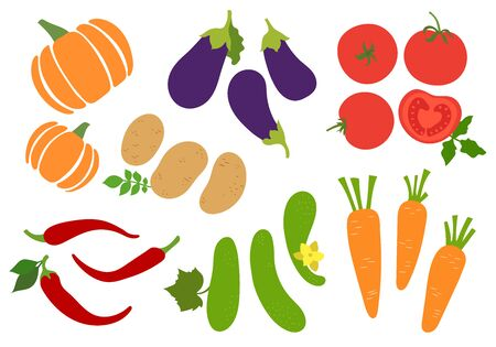 Vegetables set. Potato, cucumber, tomato, pepper, chili, carrot, pumpkin and eggplant. Agriculture, gourds. Hand drawn vector sketch. Healthy food collection. Vegetarian menu Imagens - 129897537