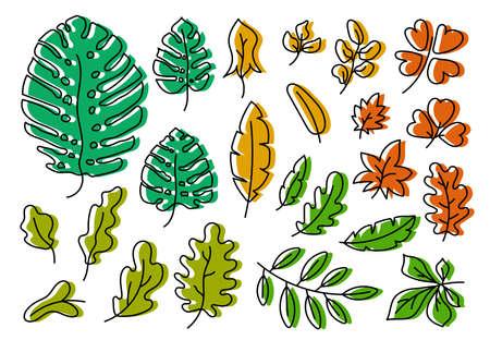 Vector leaves set. Botanical doodle drawing illustration. Multicolor hand drawn sketch. Exotic monstera leaf Ilustração