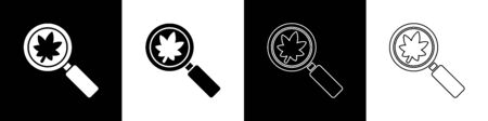 Set Magnifying glass with leaf icon isolated on black and white background. Scientific biology, study nature leaf. Vector Illustration Ilustrace