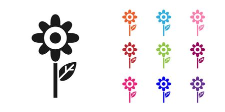 Black Flower icon isolated on white background. Set icons colorful. Vector Illustration