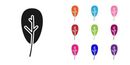 Black Leaf icon isolated on white background. Leaves sign. Fresh natural product symbol. Set icons colorful. Vector Illustration