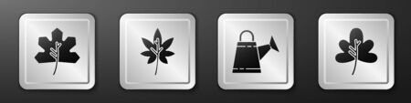 Set Leaf or leaves, Leaf or leaves, Watering can and Leaf or leaves icon. Silver square button. Vector. Ilustração