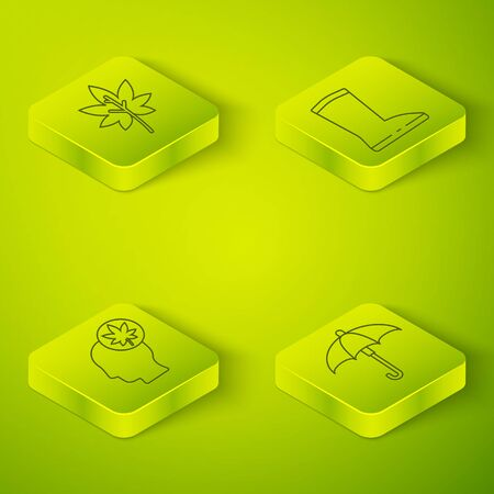 Set Isometric Waterproof rubber boot, Human head with leaf, Umbrella and Leaf or leaves icon. Vector