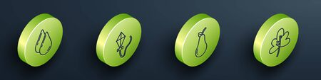 Set Isometric Water drop, Kite, Pear and Leaf or leaves icon. Vector.